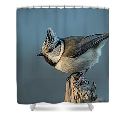 Shower Curtain featuring the photograph Crest by Torbjorn Swenelius