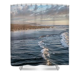 Crests And Birds Shower Curtain by Greg Nyquist
