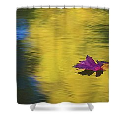 Shower Curtain featuring the photograph Crimson And Gold by Steve Stuller