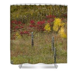 Crimson And Gold Shower Curtain by Tara Lynn