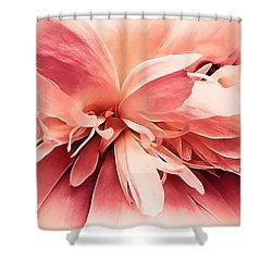 Shower Curtain featuring the photograph Crimson Ballet Powder Puff by Darlene Kwiatkowski