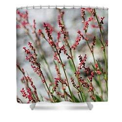 Crimson Field Shower Curtain