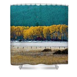 Crisp Aspen Morning Shower Curtain
