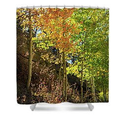 Shower Curtain featuring the photograph Crisp by David Chandler