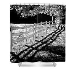 Shower Curtain featuring the photograph Crisp Morning by Betsy Zimmerli