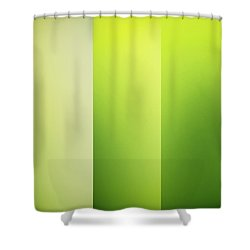 Crisp Shower Curtain