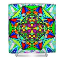 Cristal Logic Shower Curtain