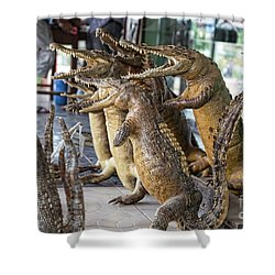 Crocodiles Rock  Shower Curtain