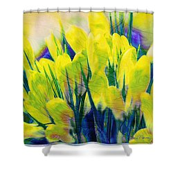 Crocus Shower Curtain