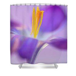 Crocus Stand Proud  Shower Curtain