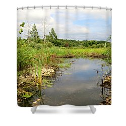 Shower Curtain featuring the photograph Crooked Creek Preserve by Kimberly Mackowski