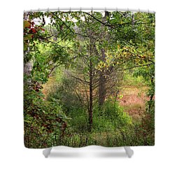 Shower Curtain featuring the photograph Crooked Creek Woods by Kimberly Mackowski