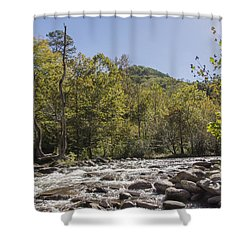 Crooked Tree Curve Shower Curtain by Ricky Dean