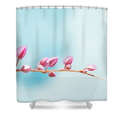 Cross The Life  Shower Curtain by Nam Tran