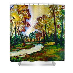 Shower Curtain featuring the painting Crossroads by Emery Franklin