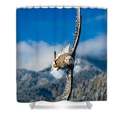 Crosswind Eagle Shower Curtain