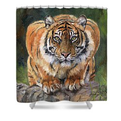 Shower Curtain featuring the painting Crouching Tiger by David Stribbling