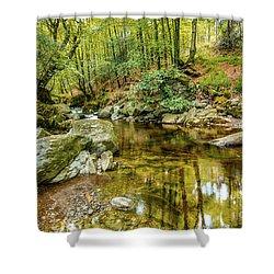 Crough Wood 1 Shower Curtain