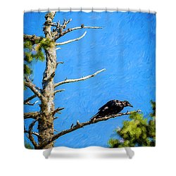 Crow In An Old Tree Shower Curtain by Ken Morris