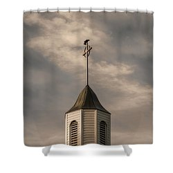 Crow On Steeple Shower Curtain by Richard Rizzo
