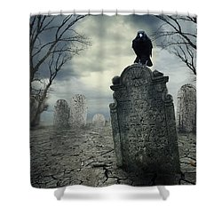 Crow On The Tombstone Shower Curtain