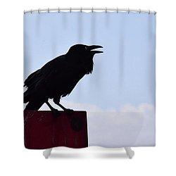Crow Profile Shower Curtain