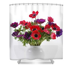 crown Anemone in a white vase Shower Curtain by Ilan Amihai