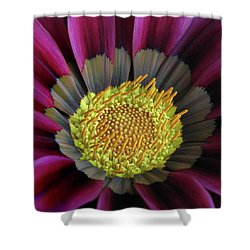Shower Curtain featuring the photograph Crown Of Pollen by David and Carol Kelly
