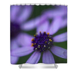 Crowned With Purple Shower Curtain