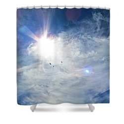 Shower Curtain featuring the photograph Crows Above by Brenda Pressnall