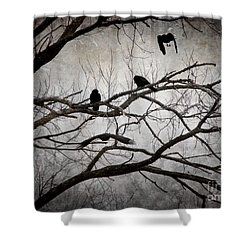 Crows At Midnight Shower Curtain