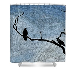 Crows On A Branch Shower Curtain by Sandra Church