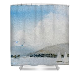 Cruising In Company Along The Tasmania Coast  Shower Curtain