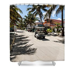 Cruising On Ambergris Shower Curtain
