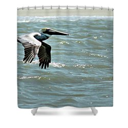 Cruising Shower Curtain by Phill Doherty