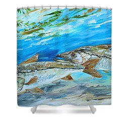 Cruising Snook Shower Curtain