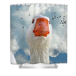 Cry Of The Wild Goose Shower Curtain
