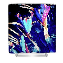 Crystal C Abstract Shower Curtain