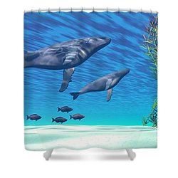 Crystal Clear Shower Curtain by Corey Ford