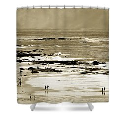 Shower Curtain featuring the photograph Crystal Cove Social by Joseph Hollingsworth