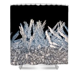 Crystal Forest Shower Curtain by Christopher Holmes