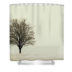 Crystal Lake In Winter Shower Curtain by Desiree Paquette