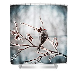 Crystal Morning Joy Shower Curtain