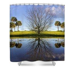 Crystal Waters Shower Curtain by Debra and Dave Vanderlaan