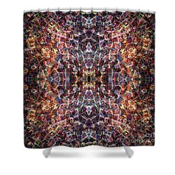 Contexual 4 Shower Curtain