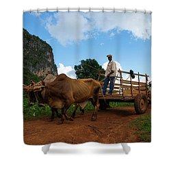 Cuban Worker II Shower Curtain