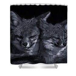 Cuddle Buddies  Shower Curtain