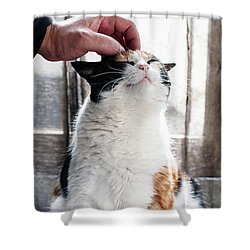 Shower Curtain featuring the photograph Cuddles by Laura Melis
