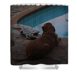 Cujo And The Alligator Shower Curtain by Val Oconnor