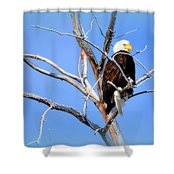 Cultural Freedom Shower Curtain
